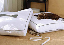 Heavenly Dog Bed