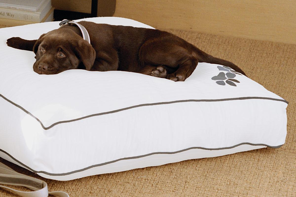 heavenly dog bed westin hotel store. Black Bedroom Furniture Sets. Home Design Ideas